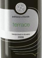 puklavec & friends 2009 Terrace