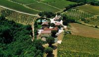 Weingut San Filippo