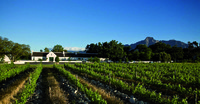 Weingut in Franschoek