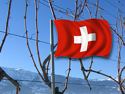 Montage Rebstock und Schweizer Flagge