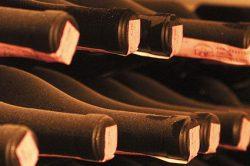 gelagerte Weinflaschen
