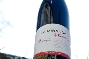 2008 La Mirande de Secastilla