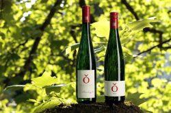 Zwei der Weine des Weinguts von Othegraven | Foto: ©Weingut von Othegraven