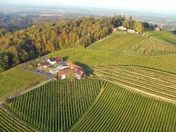 Das Weingut Gross und die Lage Nussberg