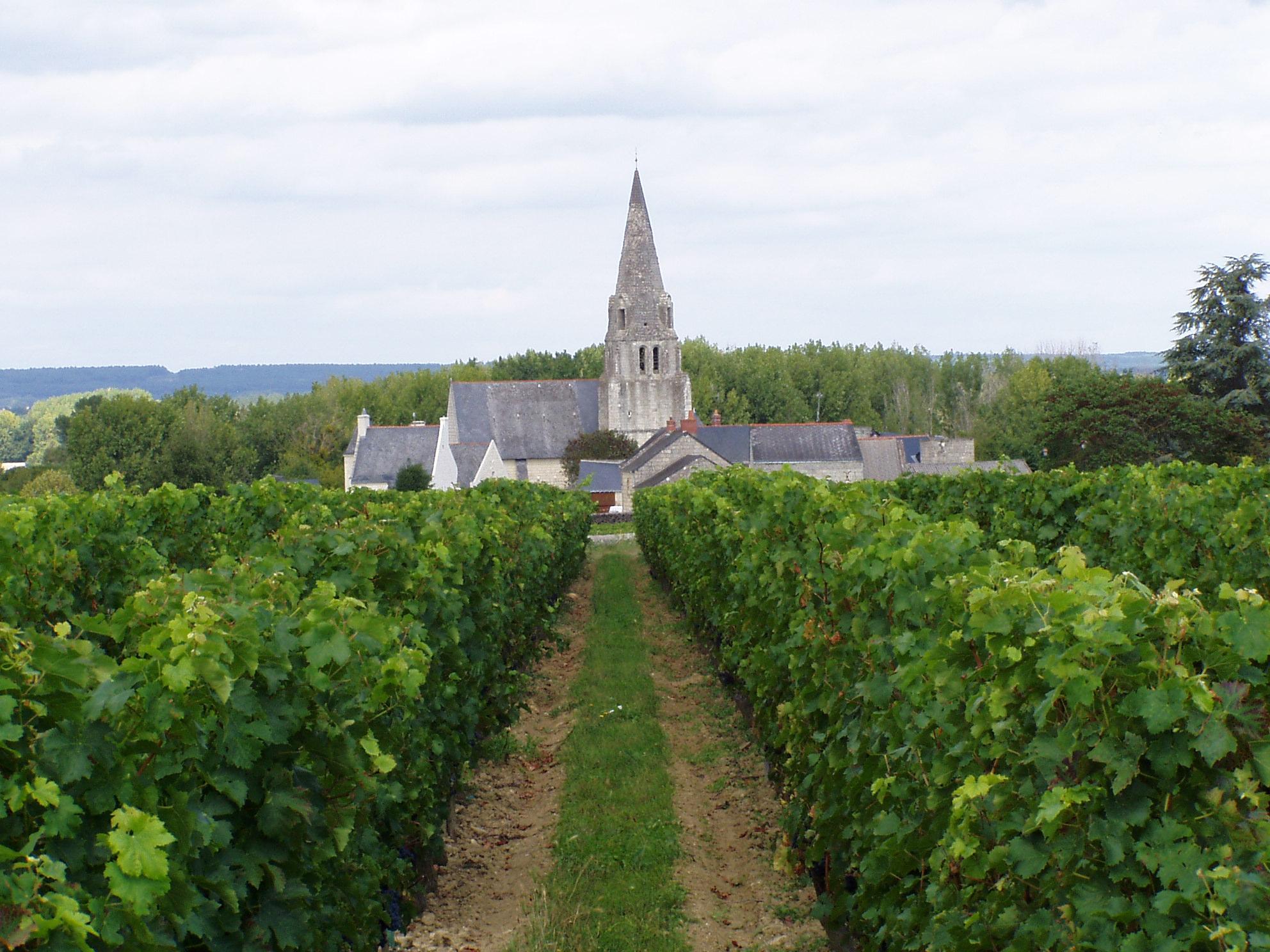 Kapelle im Weinberg bei Parnay