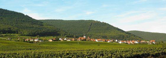 Das Weindorf Weyher in der Pfalz