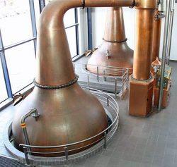 Kupferne Brennblasen der James Sedgwick Distillery