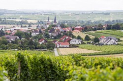 Langenlonsheim