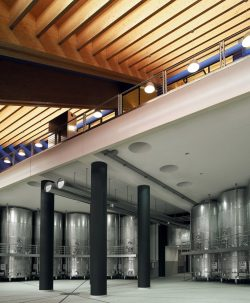 Weingut Petra - Sala vinificazione