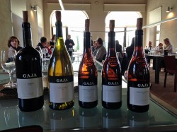 Weinprobe bei Gaja