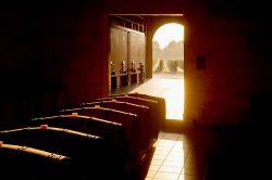 Weinkeller in Bordeaux   Foto: © CIVB