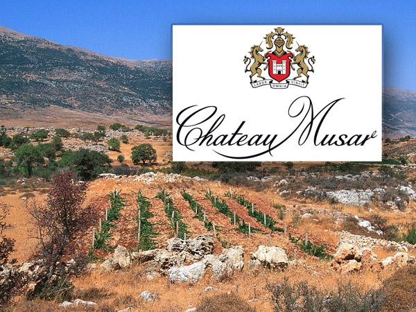 Chateau Musar Artikelbild