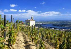 Hermitage oberhalb der Rhône