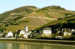 Assmannshausen am Rhein mit dem Höllenberg