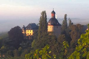 Schloss Vollrads Artikelbild