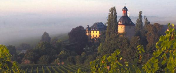 Besuch auf Schloss Vollrads: vom Cabinet zum Kabinett