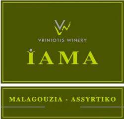 2014 IAMA Weiss | Konstantinos Vriniotis