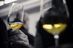 Verdicchio: Wein für Spießer?
