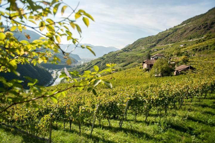 Weingut In der Eben am Ritten bei Bozen