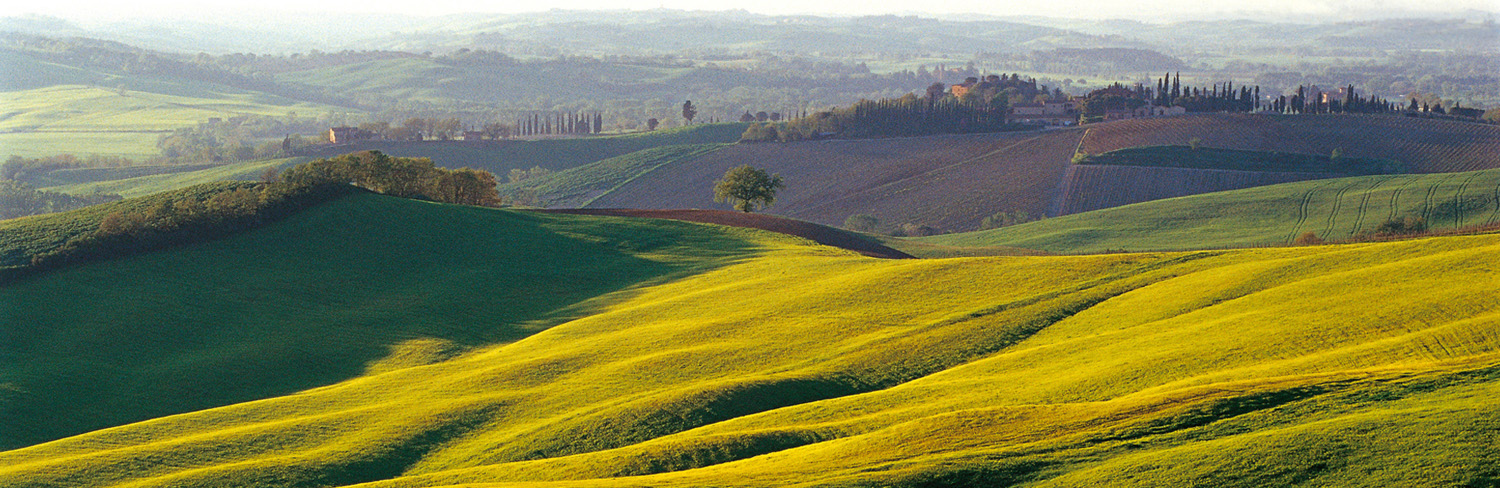 Landschaft in Montalcino