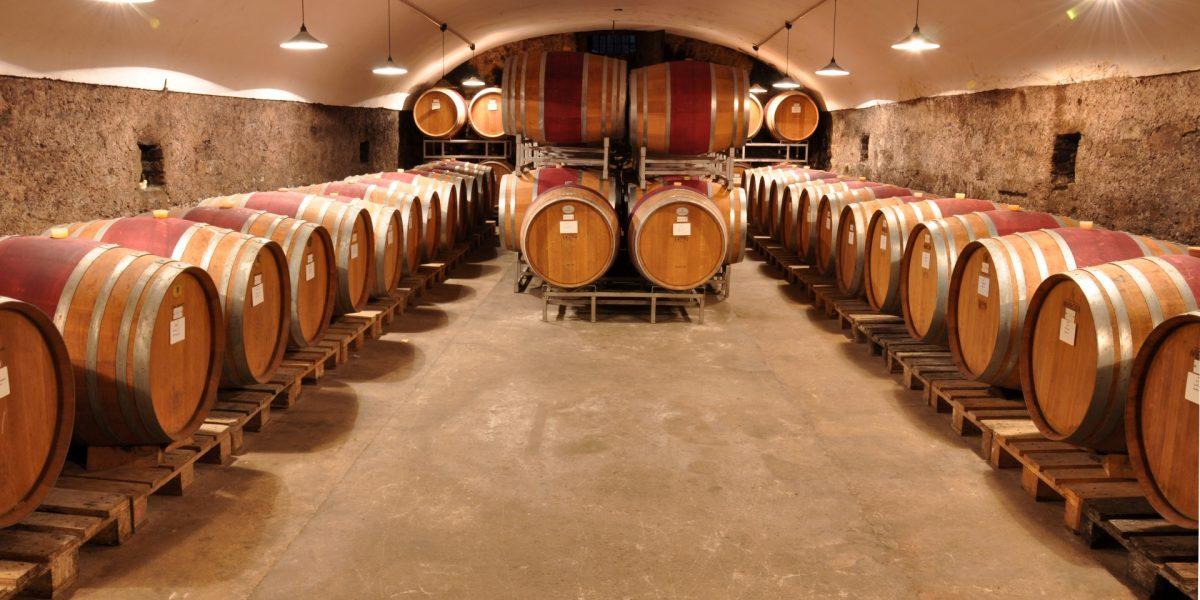 Weingut Nelles 1479 Weinkeller Weinfaesser