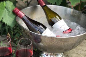 Eisgekühlter Spätburgunder vom Weingut Riske