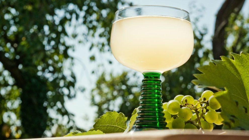 Ein Glas Federweißer Wein