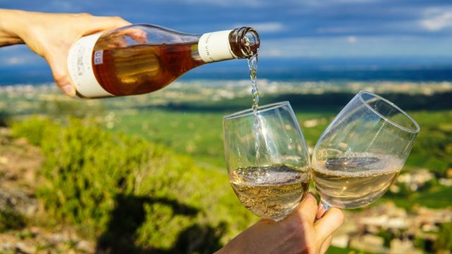 Chardonnay in in Südafrika