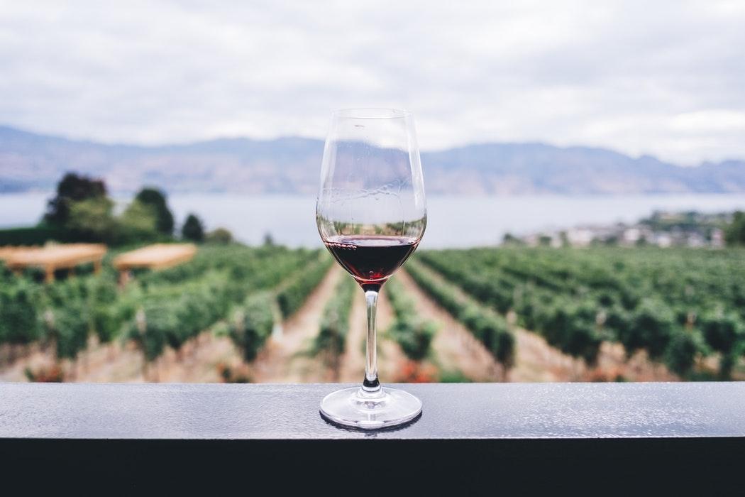 Rotwein in Südafrika