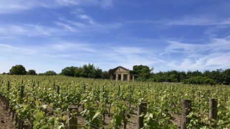Das Weingut Saint Emilion in Bordeaux