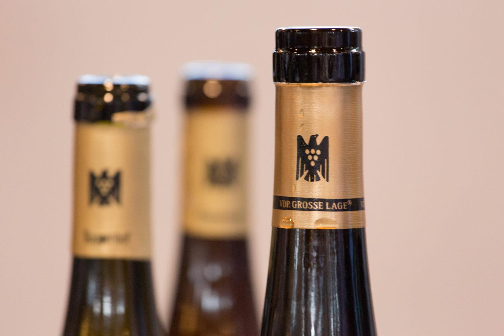 GG 2017 Rheinhessen Flaschen bei der Verkostung