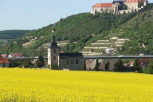 Winzervereinigung Freyburg-Unstrut Schloss Neuenburg