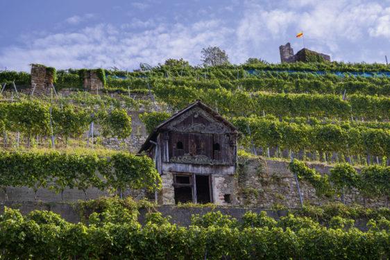 Schlossberg Staufen Pulverhäuschen